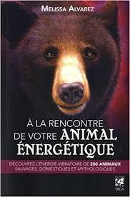 a la rencontre de votre animal énergétique